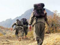 Teröristler iki askeri kaçırdı!