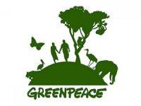 Greenpeace Türkiye'den enerji (D)evrimi için yol haritası