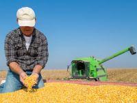 Bursalı çiftçi planlı ekim istiyor