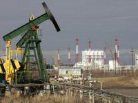 'Rusya'nın petrol görünümü negatif'