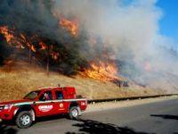Orman yangını sayısı arttı, yanan alan daha az oldu