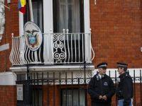 BM, Assange lehine karar verdi