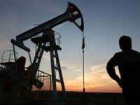 Vitol'den 10 yıllık petrol tahmini