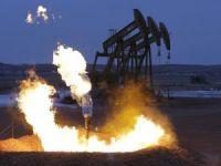 'Küresel enerji şirketleri fazla tutunamaz'