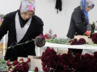 Çiçekçilere, Sevgililer Günü'nde Rusya darbesi
