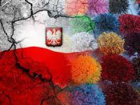 Polonya halısının ipliği Türkiye'den