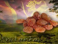 Sri Lanka Türkiye'den üzüm ithal edecek