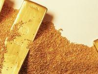 Altın daha da gerileyebilir