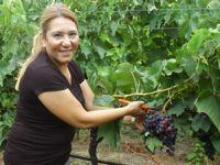Ürettiği üzüm 6 ülkeye ihraç ediliyor