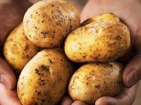 Artan patates fiyatlarına müdahale gelebilir