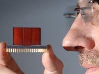 'Elektronik burun' hastalıkları koklayacak