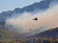 Safranbolu'da orman yangını
