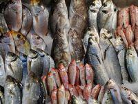 """İstanbul'da balık """"e-mezatla"""" satılacak"""