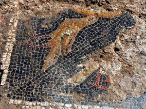 Buğday tarlasında Roma mozaiği bulundu